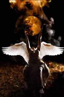 Fantasy, Angel, Women