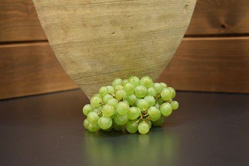 Vine, Vineyard, Wine, Fruit, Harvest, Agriculture