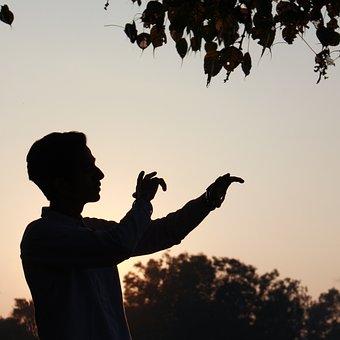 Punjabi Music, Punjabi Song, New Punjabi Songs