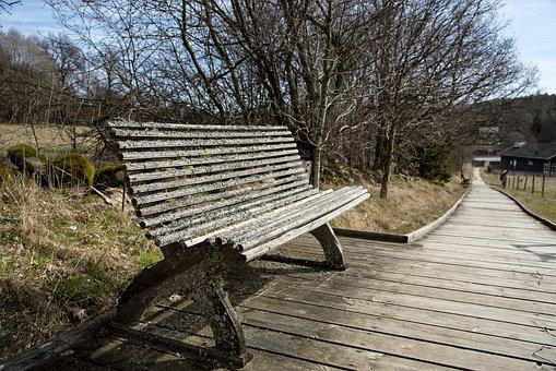 Sofa, Parksoffa, Bench, Wood, Old, Moss, Seat, Rest