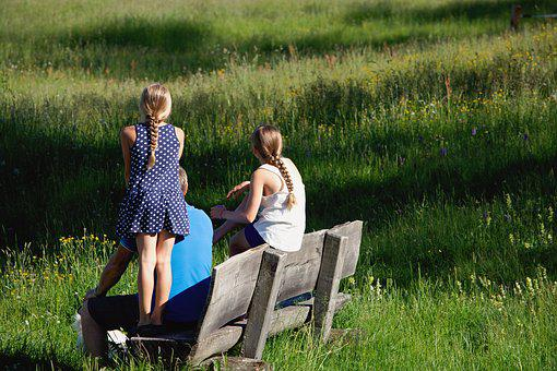 Bench, Click, Rest, Summer, Nature, Family, Meadow