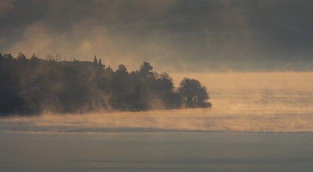 Fog, Cold, Lake, Forest, Nature, Trees, Landscape, Mood