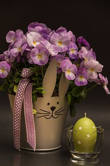 Easter, Egg, Green, Candle, Flowers, Purple