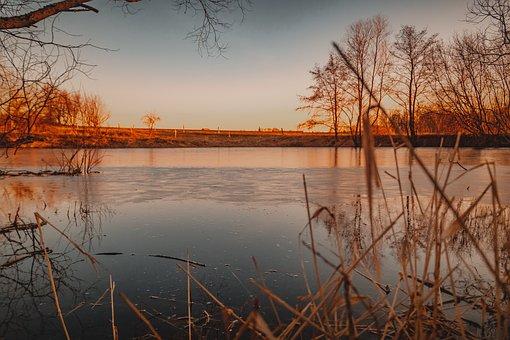 Pond, Lake, Evening, Sun, Sunset, Nature, Water