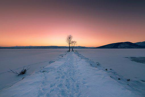 Winter, Ice, Cold, Snow, Frozen, Frost, Landscape
