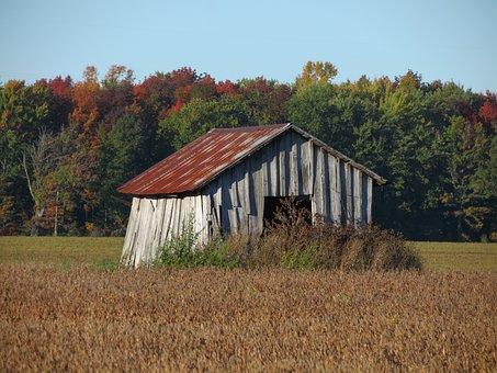 Hut, Shed, Derelict, Ruin, Abandoned, Wooden, Deserted