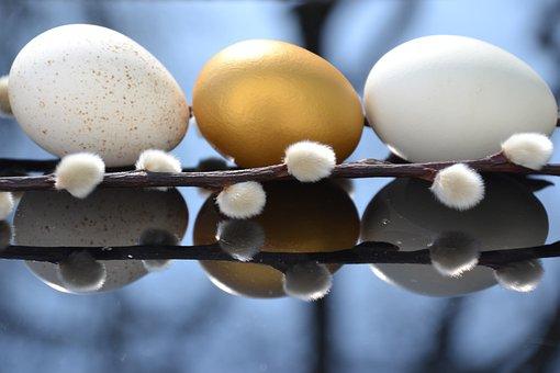 Egg, Putenei, Goldei, Hen's Egg, Easter, Easter Theme