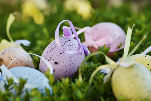 Easter, Egg, Color, Holiday, Cant, Spring, Nature