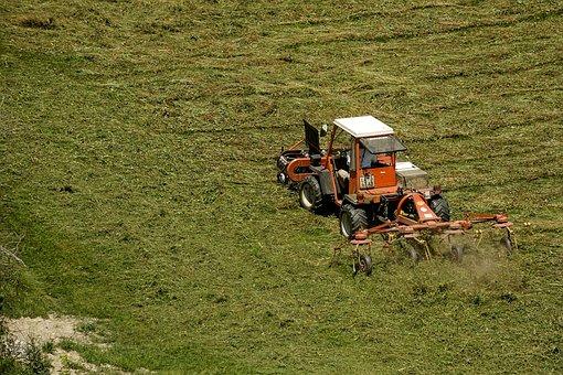 Agriculture, Machine, Rural, Equipment, Harvest