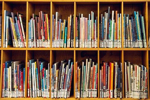 Kid, Shelf, Books, Book, Reading, School, Fun, Hobby