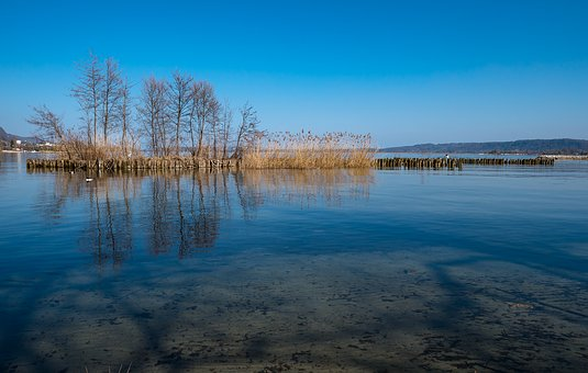 Lake, Water, Shore Zone, Trees, Mirroring, Lake Biel