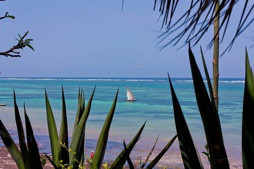 Indian Ocean, Kenya, Sea, Sailing Boat, Africa