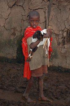 Goat, Masaj, Kenya, Village, Boy, Africa