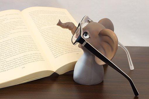 Elephant, Glasses, Book, Read, Reading Glasses