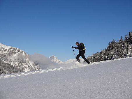 Snowshoe, Snow, Snowshoeing, Winter Trip, Winter