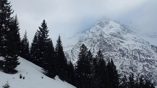 Wildental, Allgäu, Kleinwalsertal, Alpine, Winter