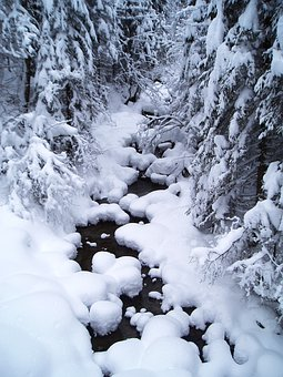 Snow, Bach, Water Running, Wintry, Nature, White, Snowy