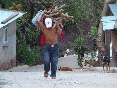 Work, Poverty, Honduras, Portrait, Workers, Worker