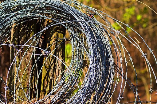 Barbed Wire Roll, Wire, Barb, Barbed, Fence, Security