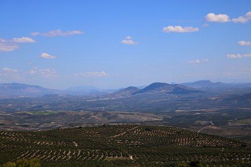 Landscape, Baeza, Valley Of The Guadalquivir, Jaén