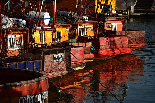 Port, Boat, Boats, Fishing, Reflection, Sea, Water