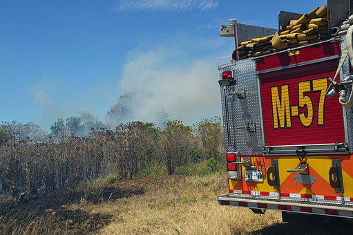 Fire, Forest, Smoke, Unit, Machine, Truck, Hoses
