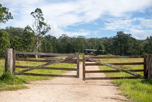 Farm, Sky, Trees, Timber, Gate, Grate, Dirt, Road