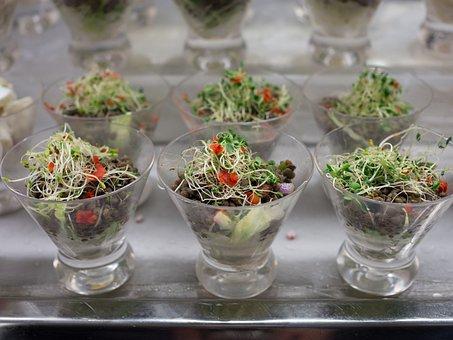 Salad, Sprouts, Healthy, Veggies, Nutrition, Vegetarian