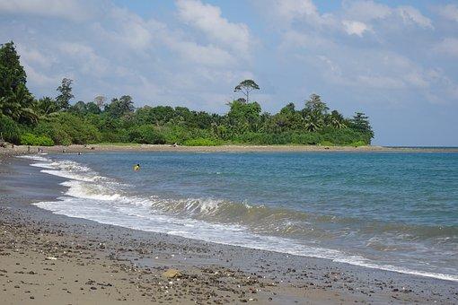 Beach, Rangat, Flora, Greenery, Sea, Bay Of Bengal