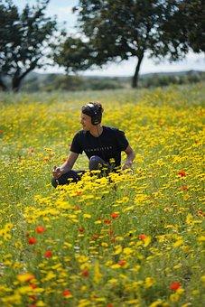 Spring, Flowers, Nature, Plant, Blossom, Bloom, Summer