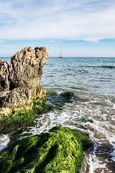 Sea, Boats, Boat, Ocean, Blue, Nature, Summer