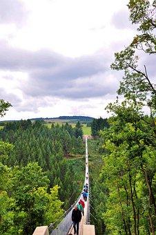 Hanging Rope Bridge, Suspension Bridge, Bridge, Nature