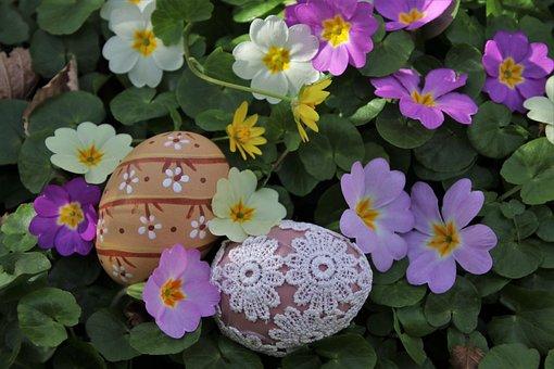 Spring Flowers, Prymule, Easter, Easter Eggs, Meadow