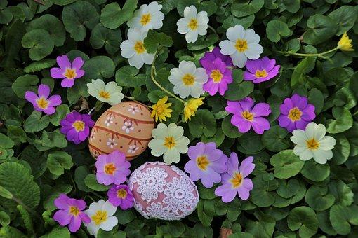 Easter, Easter Eggs, Prymule, Egg, Primula, Foliage