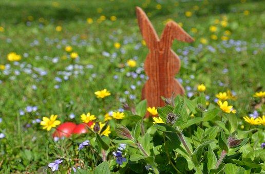 Easter, Hare, Easter Bunny, Spring, Grass, Nature, Egg