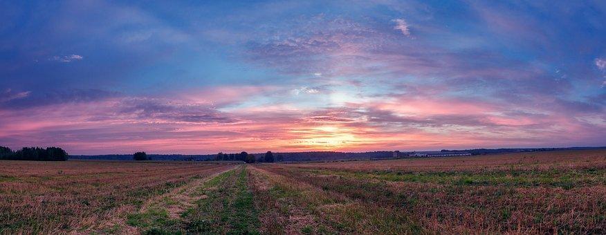 Field, Morning, Landscape, Nature, Sky, Grass, Green