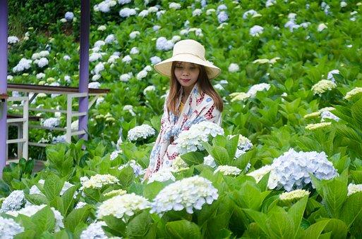 Grass, Happiness, Meadow, Kids, Pretty, Summer, Sun
