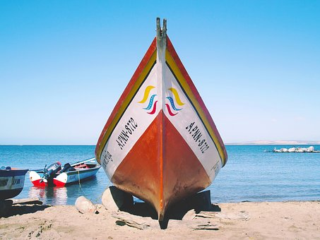 Cumaná, Sucre, Venezuela, Beach, Sea, Animals, Boat