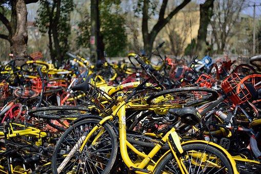 Bicycle, Sharing, Ofo, Mobai, Sharing Bicycle, Close-up