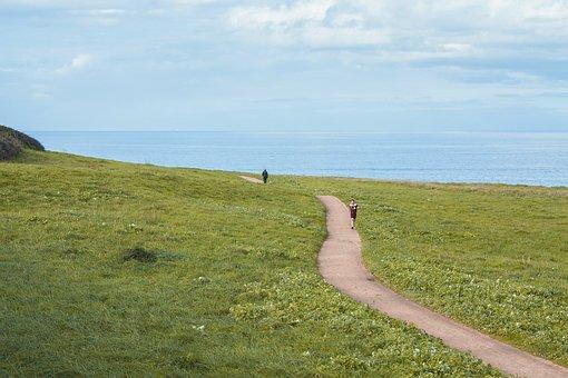 Green, Nature, Landscape, Sky, Hiking, Field, Path
