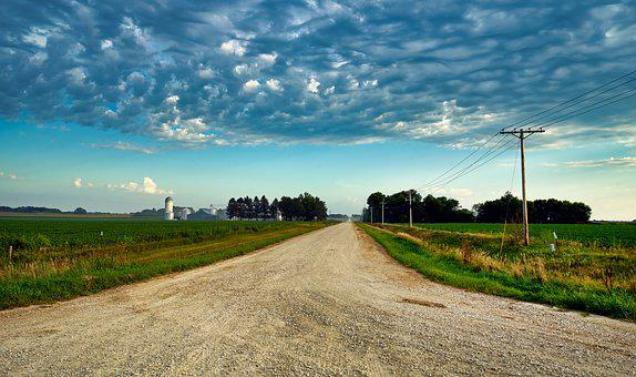 Country Road, Iowa, Soybean Fields, Farm, Agriculture