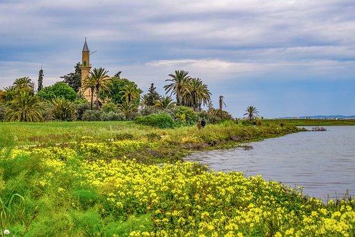 Cyprus, Larnaca, Lake, Salt Lake, Landscape, Morning