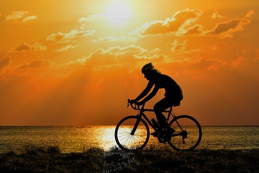 Cyclist, Bicycle Racing Cyclist, Sport, Training