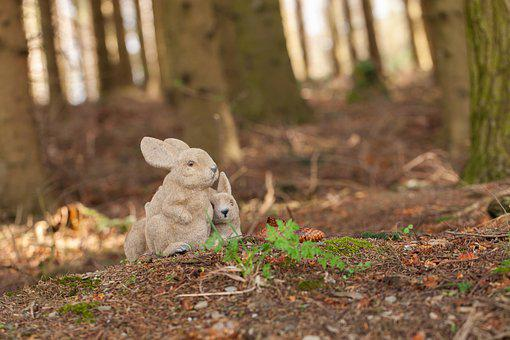 Small, Cute, Sweet, Nature, Hare, Holiday, Festival