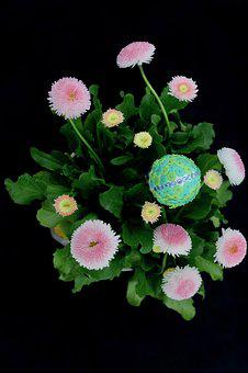 Easter, Egg, Flowers, Decorative, Colored, Easter Eggs