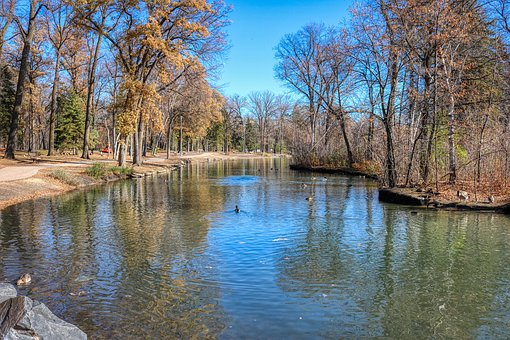 Autumn, Pond, Trees, Park, Water, Nature, Landscape