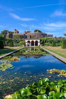 Pond, Nuphar, Lily Pond, Castle Park, Aquatic Plants