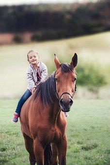 Girl, Child, Rider, Person, One, Pleasure, Nature, Face