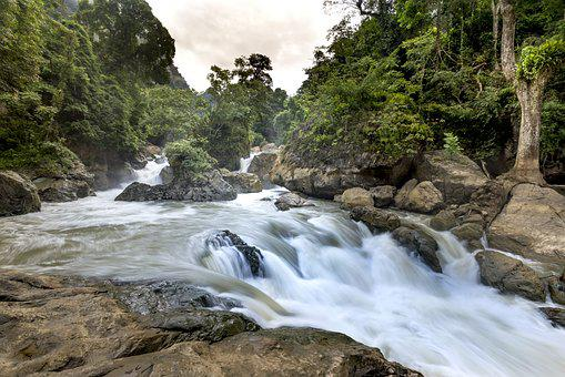 The Waterfall, Top College, Vietnam, Natural, Plant
