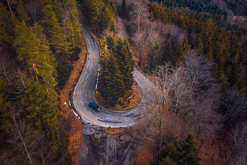 Black Forest, Fir Tree, Road, Drone, Tower, Nature